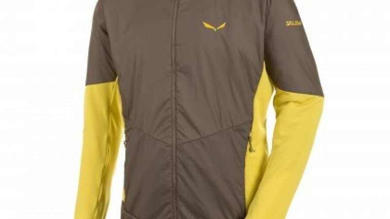 Salewa Ped Roc Mens