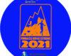 Car Sticker Pre 2021